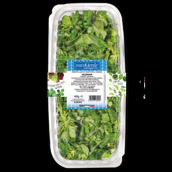 Valeriana formato catering, con fascetta apri e chiudi
